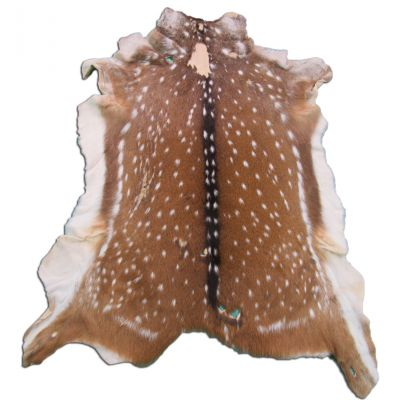 "Second Grade Axis Deer Skin Hide Size: 46"" X 38"" Axis Deer Skin Axis-575"