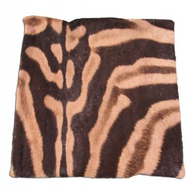 Real Zebra Skin Pillow Cover - 16 in X 16 in - Real Zebra Hide Pillow Cover - C-1131