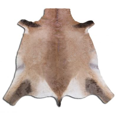 Red Hartebeest Skin Second Grade - Size: 5' x 4' N-327