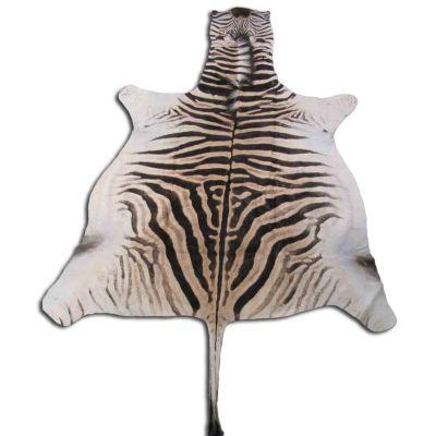 Real Zebra Skin Rug Size: 8' X 6' Burchell's Hide Zebra Rug 86
