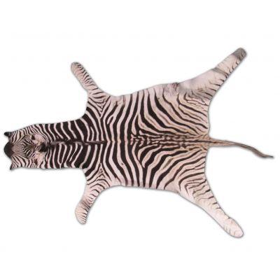 Real Baby Zebra Skin Rug Size: 42X33 inches Burchell's Hide Zebra Rug 87